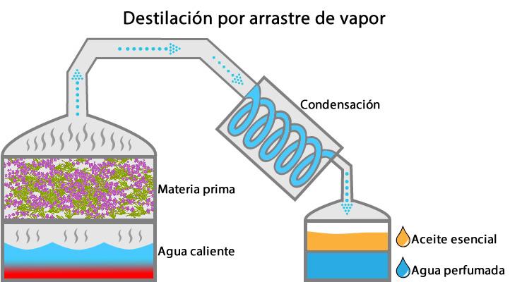 Esquema de destilación de arrastre con vapor.